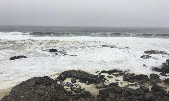 Seremi de Bienes Nacionales intensifica fiscalización de acceso a playas en borde costero