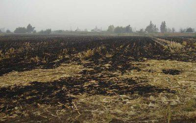 Autoridades recuerdan prohibición de efectuar quemas agrícolas