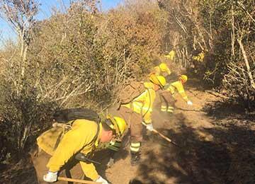 Conaf O'Higgins entrega cifras de la temporada de incendios forestales