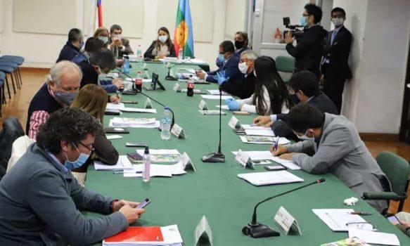 Consejeros regionales se reúnen con Intendenta para analizar medidas y proyectos para enfrentar COVID-19