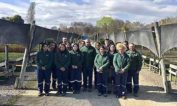 Día del árbol: La gran meta de Conaf O'Higgins para dejar verdes las comunas de la región
