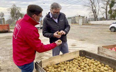 Agricultores donan más de 10 toneladas de frutas para comedores solidarios