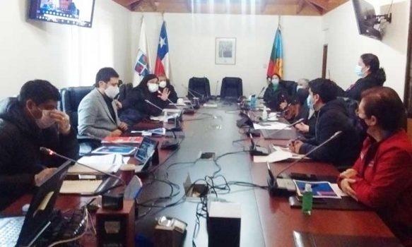 Consejo Regional aprobó 400 millones de pesos para el sector de las culturas y las artes
