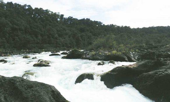 Corfo abre en O'Higgins llamado para crear consorcio en gestión de recursos hídricos en la macrozona centro-sur de Chile