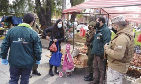 Fiscalización de ferias libres en Rancagua y Machalí