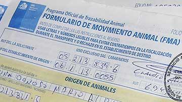 SAG mantiene fiscalizaciones sobre movimiento de animales
