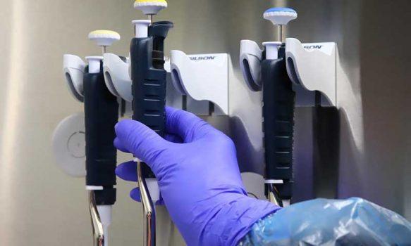 Universidad de O'Higgins comenzó a procesar PCR