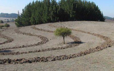 Indap del Minagri invertirá este año más de $1.840 millones en mejorar los suelos agrícolas de la región