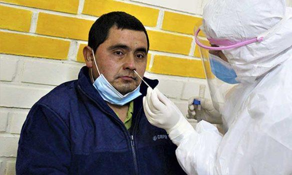 San Fernando: Choferes de locomoción colectiva se realizaron examen PCR