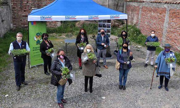 Entregan árboles nativos y plantines de hortalizas a representantes de la Mesa de la Mujer Rural de O'Higgins
