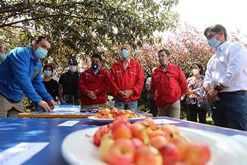 Ministro de Agricultura destaca programa de mejoramiento genético del cerezo