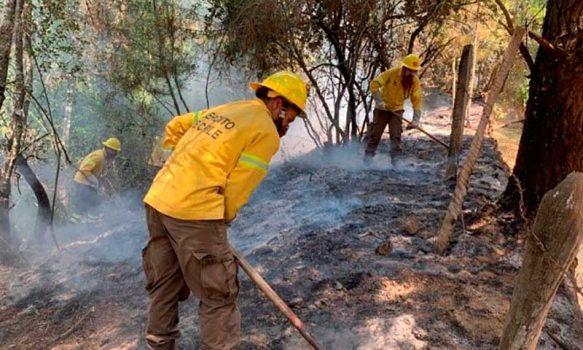 El trabajo de las Brigadas de Refuerzo de Incendios Forestales del Ejército previene o mitiga daños considerables en el recurso forestal