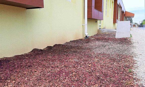 Hospital de Chimbarongo implementa proyecto de paisajismo que permitirá ahorro sustentable de agua potable