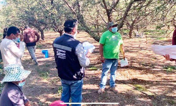 En Mostazal sorprenden a trabajadores extranjeros sin permisos laborales y con ingreso ilegal a Chile