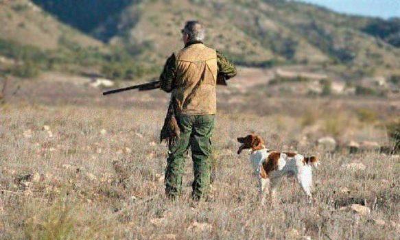 Jefatura de zona de O'Higgins suspende nuevamente temporada de caza grupal y recreativa