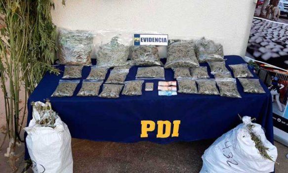 PDI detuvo a sujeto sorprendido con más de 20 kilos de cannabis en Marchigüe