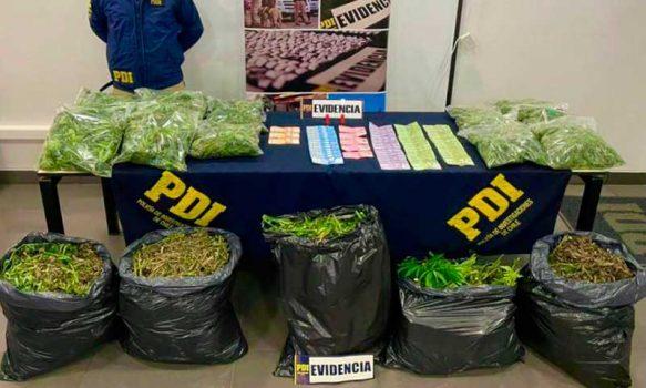 PDI incautó 34 kilos de cannabis desde una vivienda en Santa Cruz