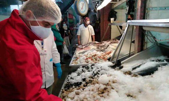 Seremi de Salud O'Higgins fiscalizó pescaderías y entregó recomendaciones para Semana Santa