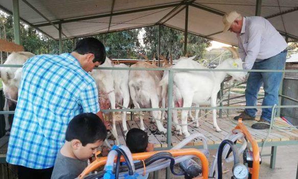 Palmilla: 44 pequeños agricultores se adjudicaron proyectos de inversión al fortalecimiento productivo