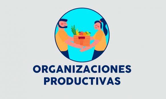 Fosis llama a organizaciones productivas a postular a programa de reactivación económica