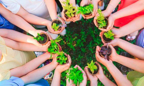 Seremi del Medio Ambiente ofrece ciclo de charlas ambientales para la ciudadanía