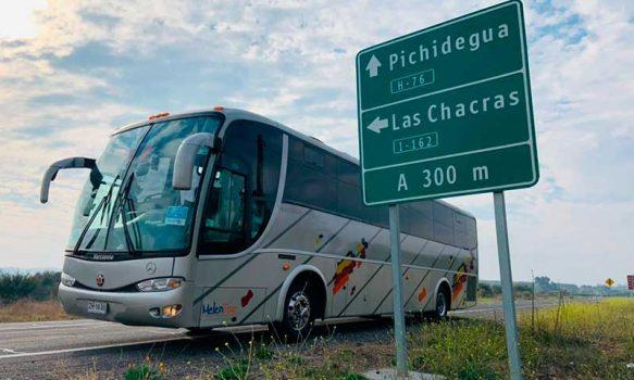 Transporte público gratuito para segunda vuelta de gobernadores