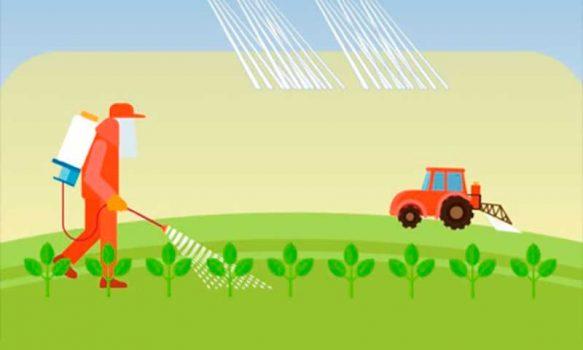 Agricultores del país disponen de manual sobre uso de plaguicidas