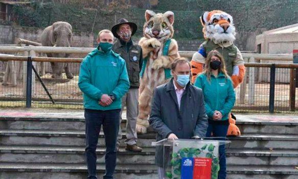 Ministro Felipe Ward anuncia la reapertura del Buin Zoo con estrictos protocolos sanitarios