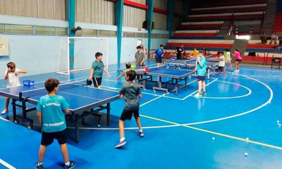 Talleres deportivos online, tenis de mesa formativo
