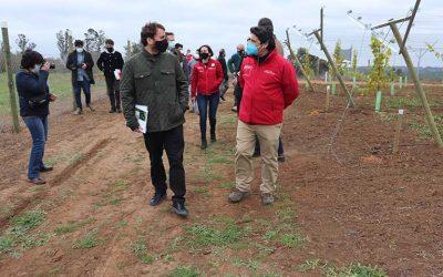 Corfo lanza programa para impulsar proyectos tecnológicos vinculados a la agricultura en O'Higgins