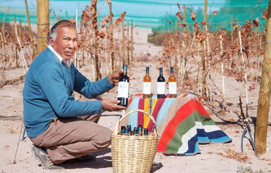 Indap invita a pequeños productores vitivinícolas a participar en el Catad'Or Wine Awards 2021